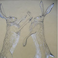 Boxing Hares drawing thumbnail