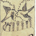 bird etching thumbnail